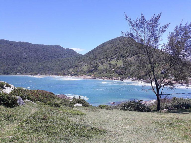 Sunny day at Armação beach in Florianópolis