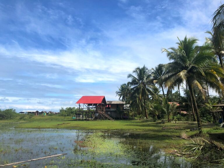 House with red roof being built near a lagoon with coconut trees