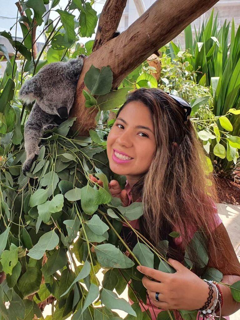 Stephania with Koala